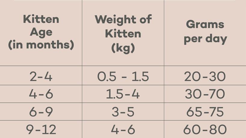 Feeding guide table for Lokuno kitten food kibble.